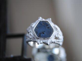 《o様オーダー品》シダの葉とサファイア原石(BGS)ピンキーリングの画像