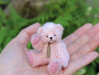ミニチュアテディベア ピンクの画像