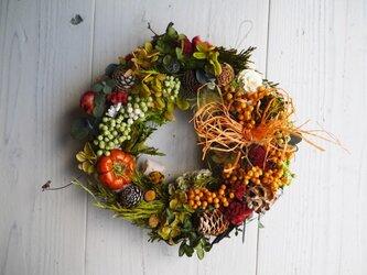 秋色・大人のハロウィン・木の実とプリザーブドフラワーのリース【木の実・プリザグリーン・ケイトウ】の画像