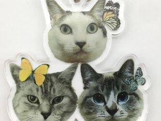 オーダーメイド うちの子 ビッグサイズ アクリルキーホルダー メモリアル ペット 名入れ 写真 ストラップ 両面印刷の画像