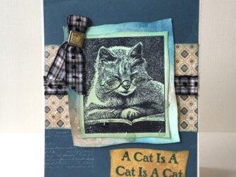 読書する猫のカード♪の画像