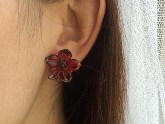 red flower イヤリング・ピアスの画像