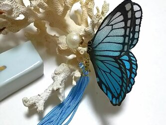 蝶のピアス 大(モルフォ)の画像