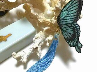 蝶のピアス 小(アゲハ)の画像