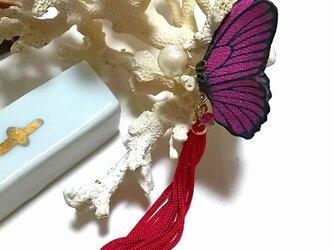 蝶のピアス 小(マダラ系)の画像
