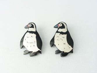 フンボルトペンギン親 漆ブローチの画像