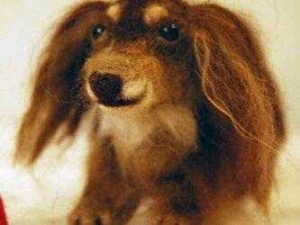 【ミニチュわん】オーダーメイド フェルティングドール,羊毛フェルト犬の画像