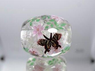 桜とギフチョウのとんぼ玉(ガラス玉)の画像