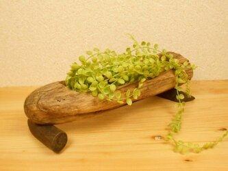 【温泉流木】すけすけストライプの流木の入れ物 流木インテリアの画像