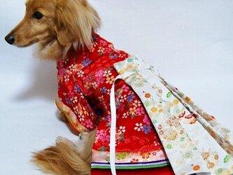 【犬着物】十二単 オーダーメイド 犬服 犬の着物 平安の画像