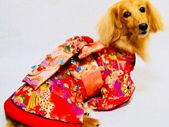 【犬着物】花魁 オーダーメイド 犬服 犬の着物の画像