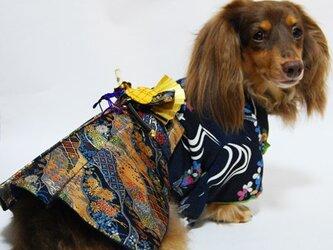 【犬袴】牛若丸 オーダーメイド 犬服 犬の着物の画像