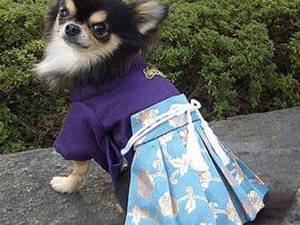 【犬袴】江戸 オーダーメイド 犬服 犬の着物の画像