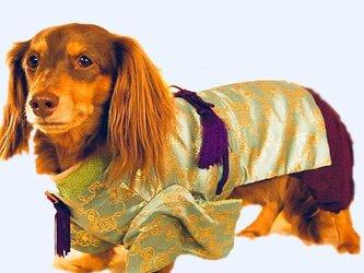 【犬着物】若君 オーダーメイド 犬服 犬の着物 平安の画像