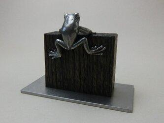 はいあがる蛙の画像