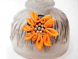 ビビットオレンジ SUNフレアーの画像