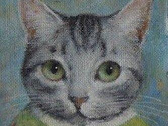サバ・ピーグリーンの画像
