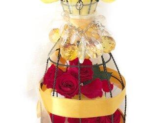 プリンセスの真実の愛と赤い薔薇/トルソーフラワードレス/プリザーブドフラワーの画像