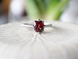 トルマリン指輪の画像