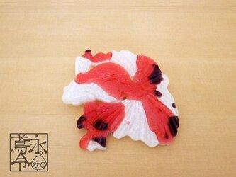 ブローチ 白色に赤色と黒色の金魚の画像