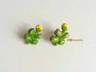 クスノキの お花ピアス(チタンポスト)の画像