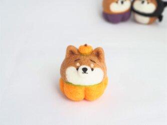 【受注製作】~ハロウィンコスプレ~かぼちゃコスプレ(オレンジ・きみどり・紫)まゆ柴犬(赤柴・黒柴・白柴)羊毛フェルトの画像