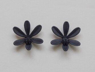 リリ ピアス・イヤリング 黒の画像