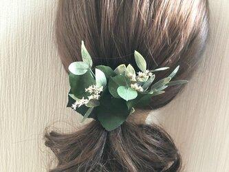 ユーカリ グリーンのボタニカルヘアクリップ髪飾り/プリザーブドフラワー/コサージュ使用可の画像