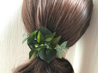 ユーカリと姫南天グリーンのボタニカルヘアクリップ髪飾り/プリザーブドフラワー/コサージュ使用可の画像