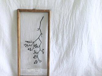 【植物標本シリーズ】ノイバラの切り絵フレーム_Cの画像