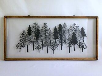 「静かな森」の画像