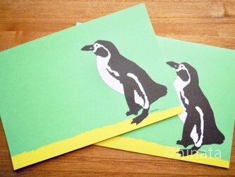 ペンギン のイラストのポストカードB/同柄2枚組の画像