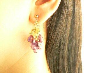 ぶどうのフルーツアクセサリー 葡萄のイヤリングの画像
