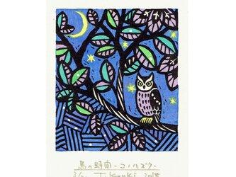 多色摺木版画「鳥の時間ーコノハズク」額付きの画像