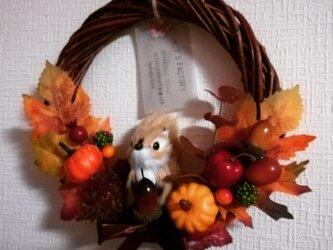 リスさんと秋の実りのリースMの画像