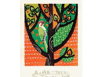 多色摺木版画「鳥の時間ーアオゲラ」額付きの画像
