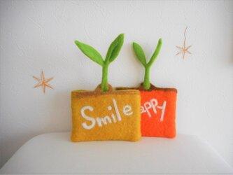 芽生えるケース Smileの画像
