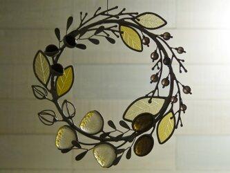 ガラスのリース [野の花] 秋の画像