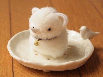 【再販】ちいさなぬいぐるみ柴犬*白の画像