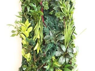 【グリーン装飾パネル/プリザーブドフラワーグリーン/森・緑】の画像