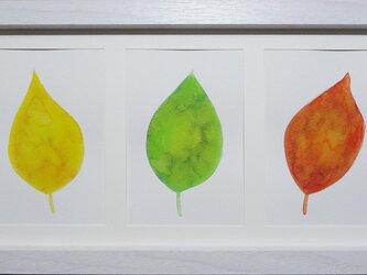 SELL【原画】葉っぱの画像