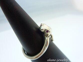 おめ目がルビーヒョウモンの指輪の画像