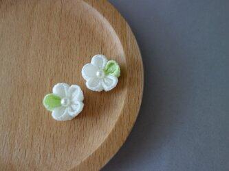 千里花~せりか~ ピアス  白×若緑の画像