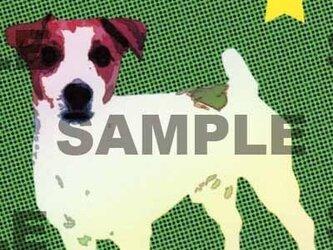 ジャックラッセルテリアのイラストポストカード/同柄2枚組の画像