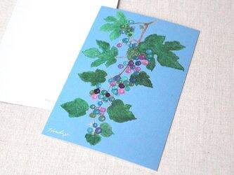 ポストカード2枚セット 野葡萄の画像