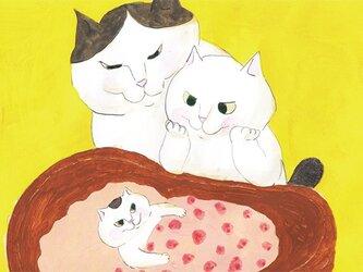 カマノレイコ オリジナル猫ポストカード「赤ちゃん」2枚セットの画像