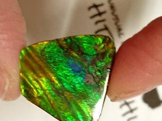 化石が産んだ宝石  カナディアンアンモライト ルース 21x20.9mmの画像