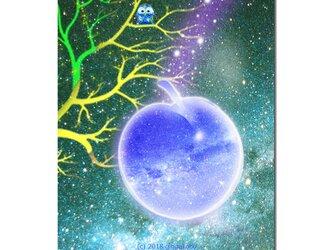 「フクロウと星空」 ほっこり癒しのイラストポストカード2枚組No.632の画像