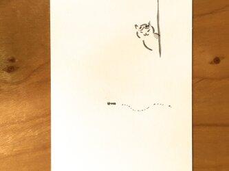 絵葉書/ポストカード <アリ>の画像