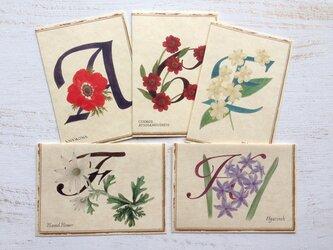 ボタニカル アルファベット カード 5種セット(組合せ自由)の画像